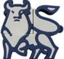 USB Stick Sonderform Sternzeichen